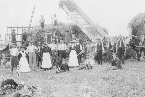 Haymaking at Highlands Farm